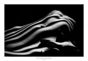Fine Art Nude Photographer Vienna - Abstract Stripes On Nude Woman's Body