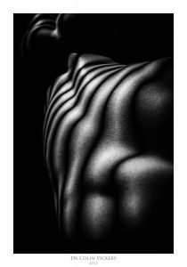 Fine Art Nude Photographer Vienna - Abstract Stripes On Nude Woman's Back