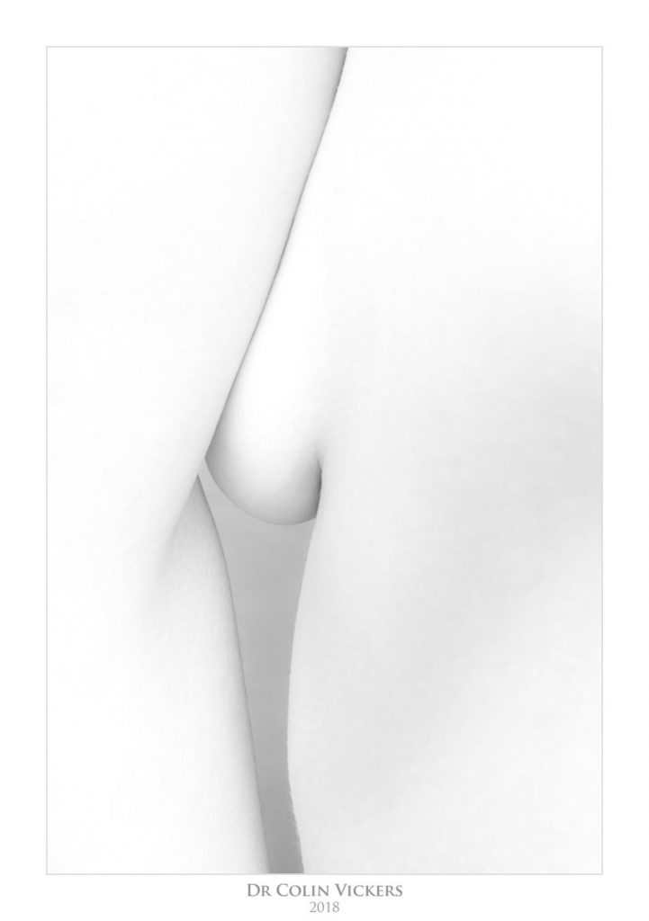 Abstract Nudes - Black and white abstract nude 3