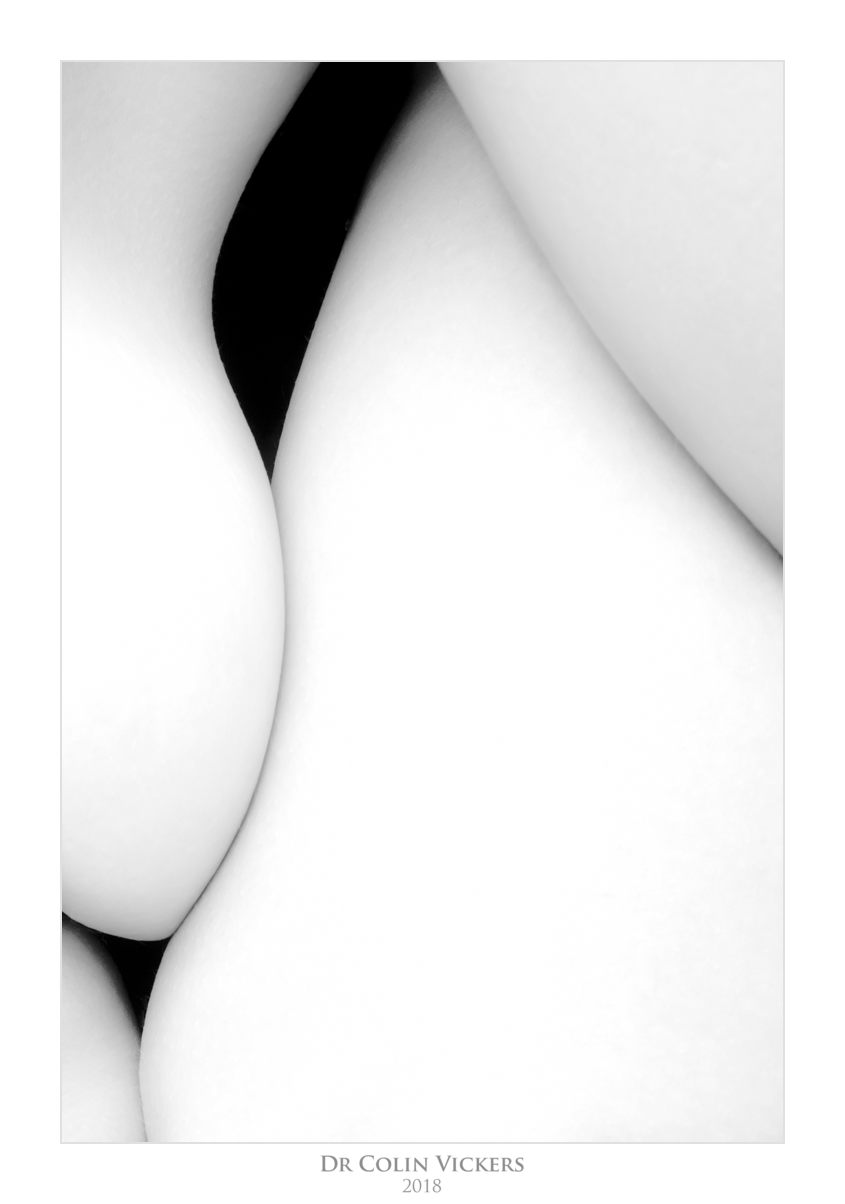 Abstract Nudes - Black and white abstract nude 1